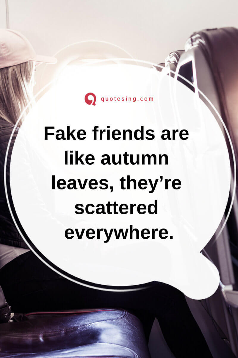 Fake Friends Quotes With Images Quotesing