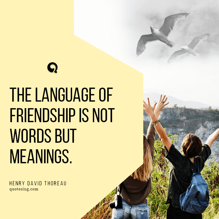 50 Friends Quotes Pictures Friendship Quotation Pictures Quotesing