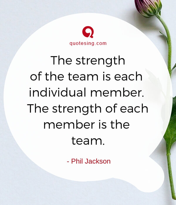 Funny Team Quotes: Teamwork Quotes For Work & Funny Teamwork Quotes